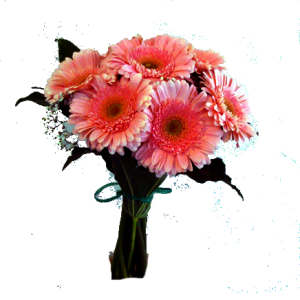 thumb_24bouquet